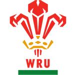 Nouveau Maillot Wales Rugby 2016-17 Domicile replica